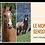 Thumbnail: Le monde sensoriel du cheval