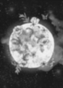 Moon_bw.jpg