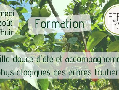Formation taille douce physiologique d'été des arbres fruitiers à Thuir samedi 7 août