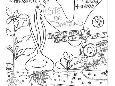 Visite de jardin thématique à Prades