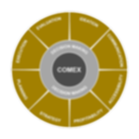 COMEX model gold NEW.png