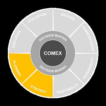 COMEX defining priorities.png