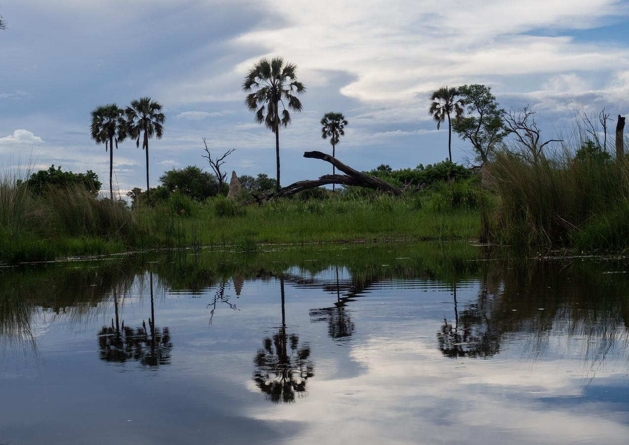 Stille im Okavangodelta