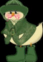 raincoat-chickLP2019.png
