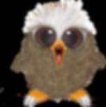 eagle-babyLP2019.png