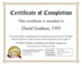 dsvedman_certificate_276.jpg