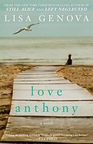 Book cover with boardwalk to the sea and a seagull flying and a lone figure in the distance.