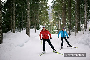 S2S 2 skate skiers in trees_MG_8641.jpg