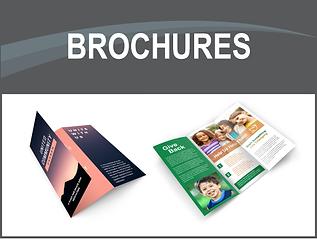 pp brochure web.png