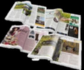 Magazine-arranged2020HP.png