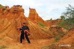 Desierto de la Tatacoa verde y ocre