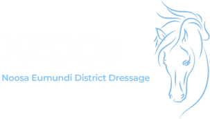 NEDDs logo on trans_2x.png