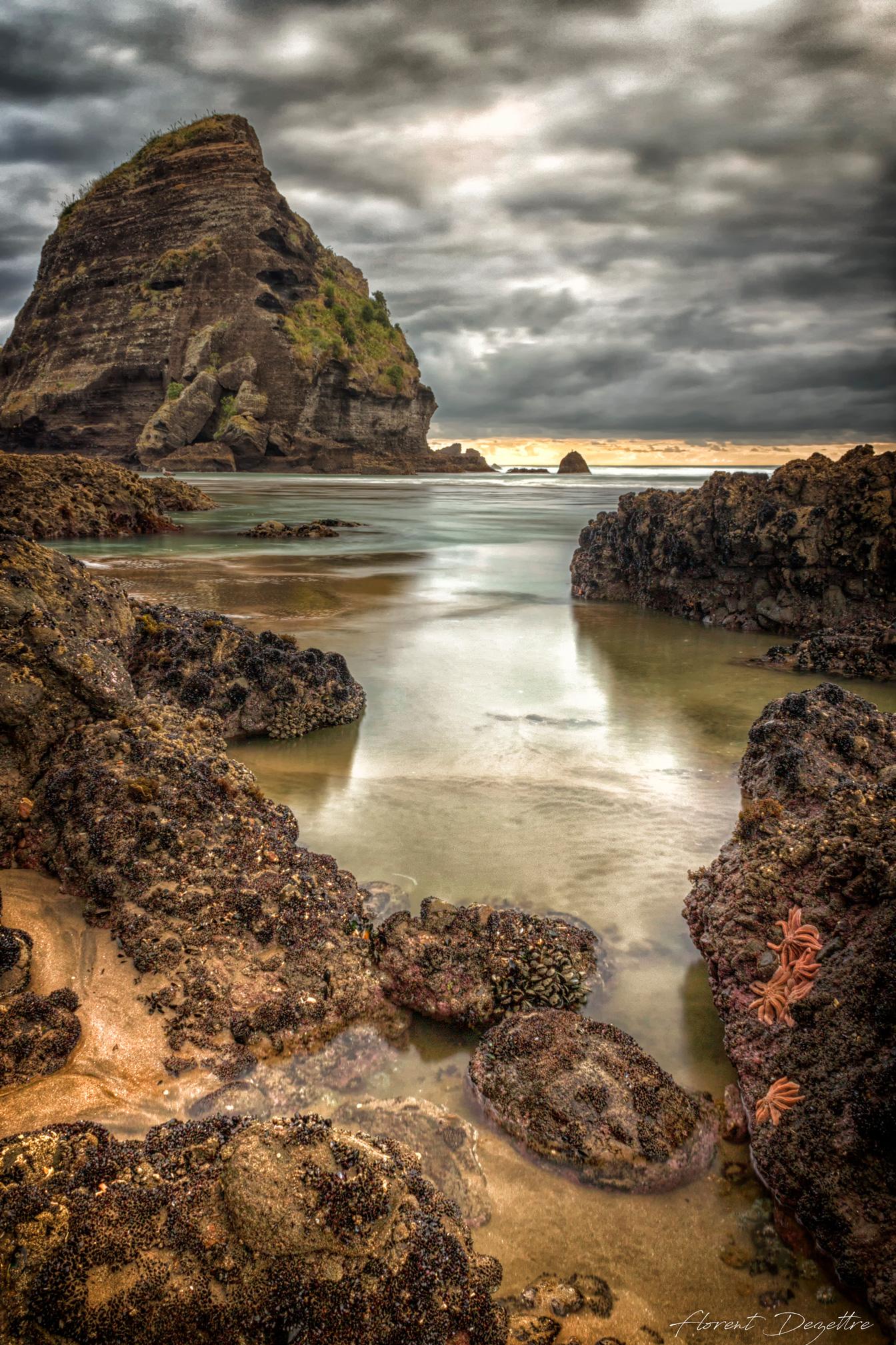 Piha-Rocks