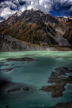 NZ_7782