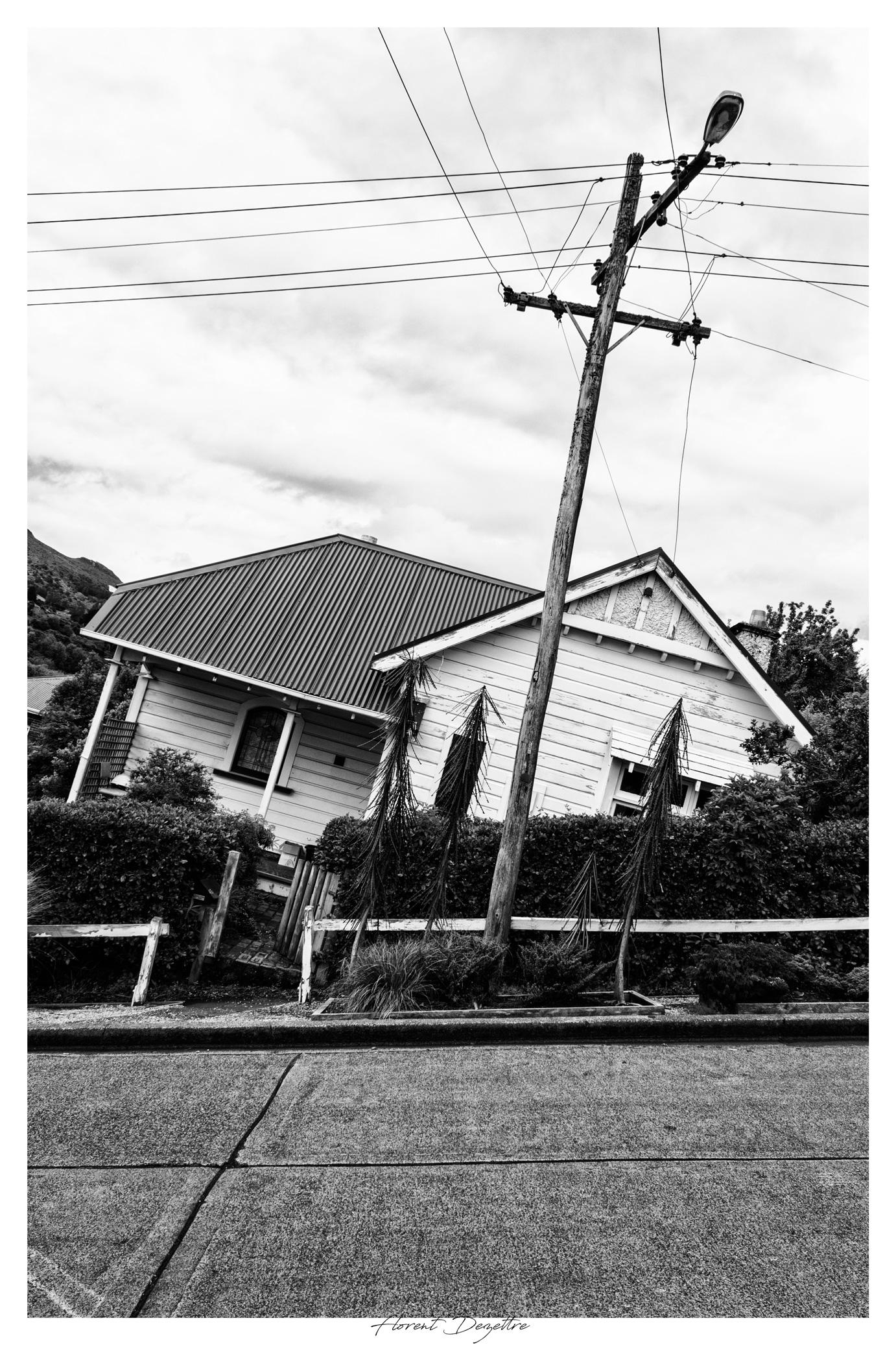 NZ_7990