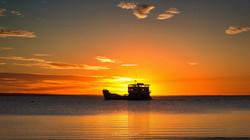 Sunset-Fraser-Ferry