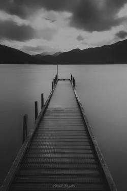 NZ_8131