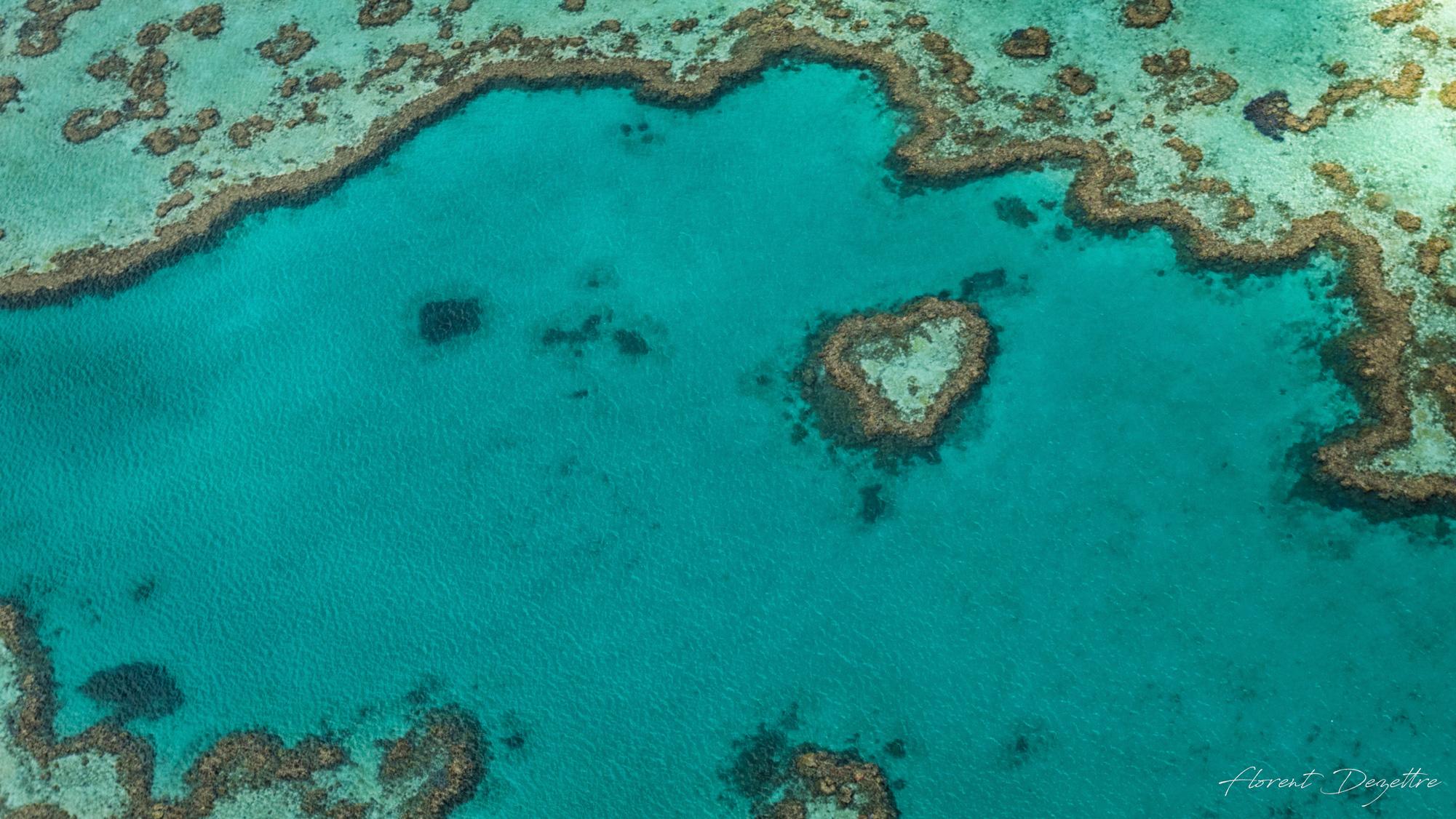 Heart-Reef