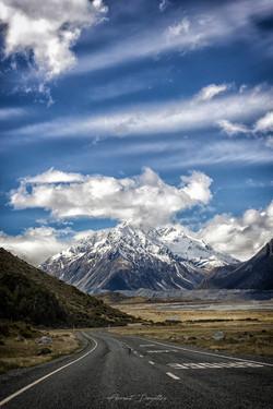 NZ_7827