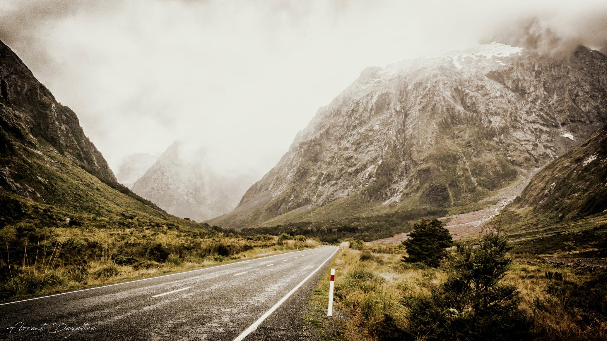 Fiordland-Road