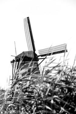 NL_2107
