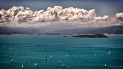Wellington-Bay