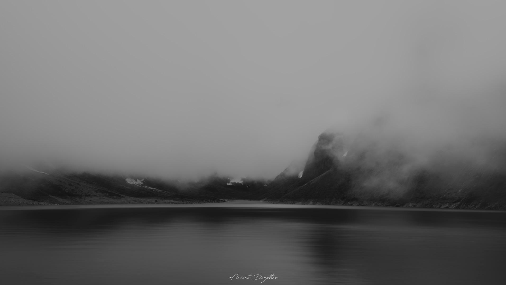 NZ_8296