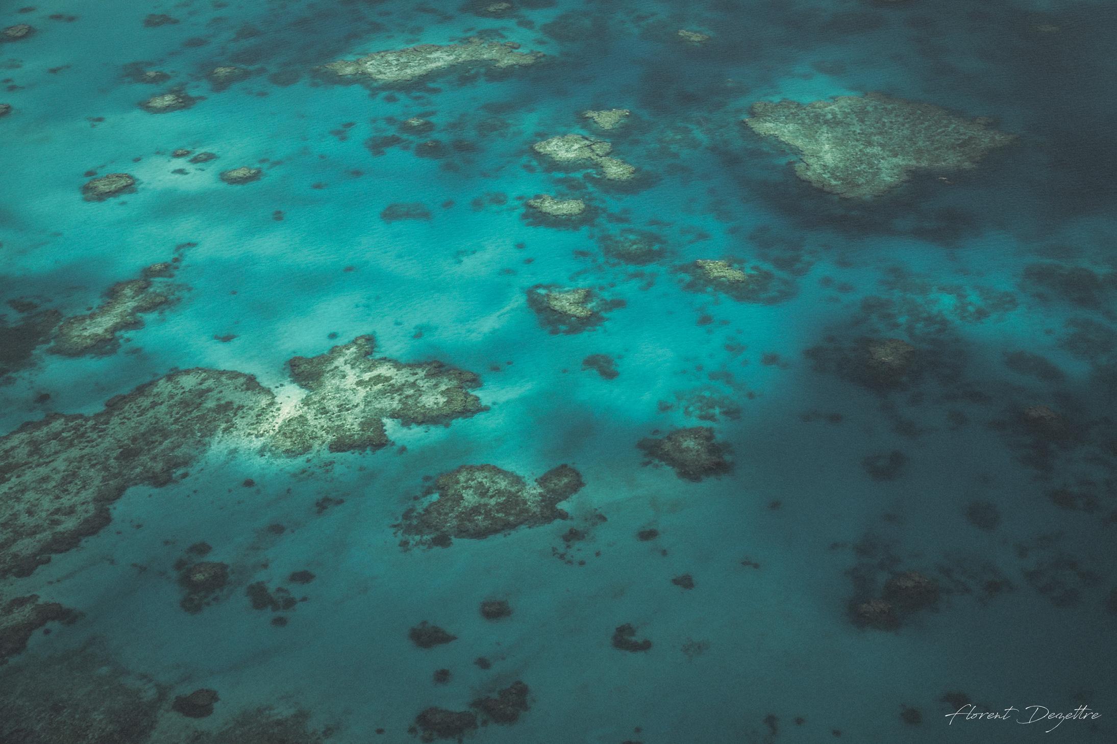 Matte-Reef