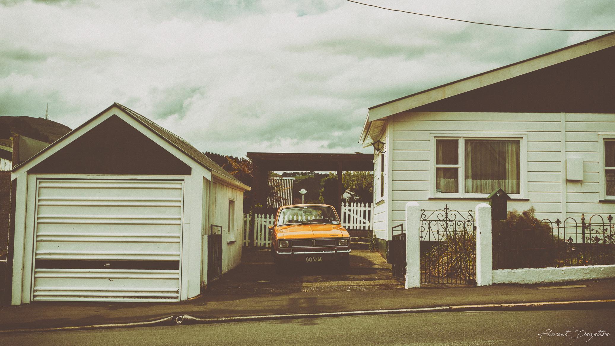 NZ_7994