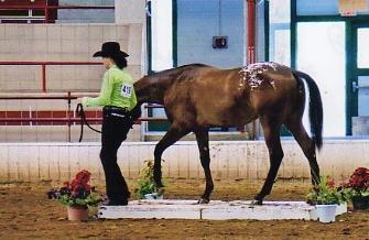 mare pardon my principle006