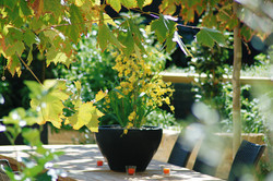 Outdoor Living Perth Landscaping