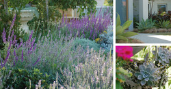 Garden Design Perth City Beach