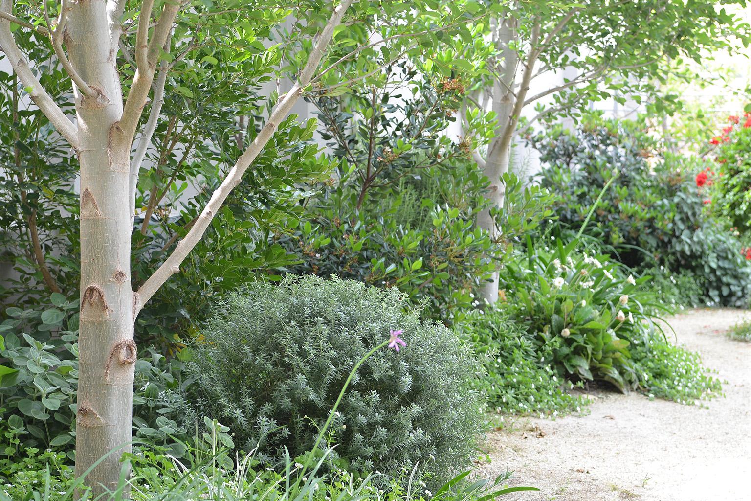 Garden Design Landscaping Applecross