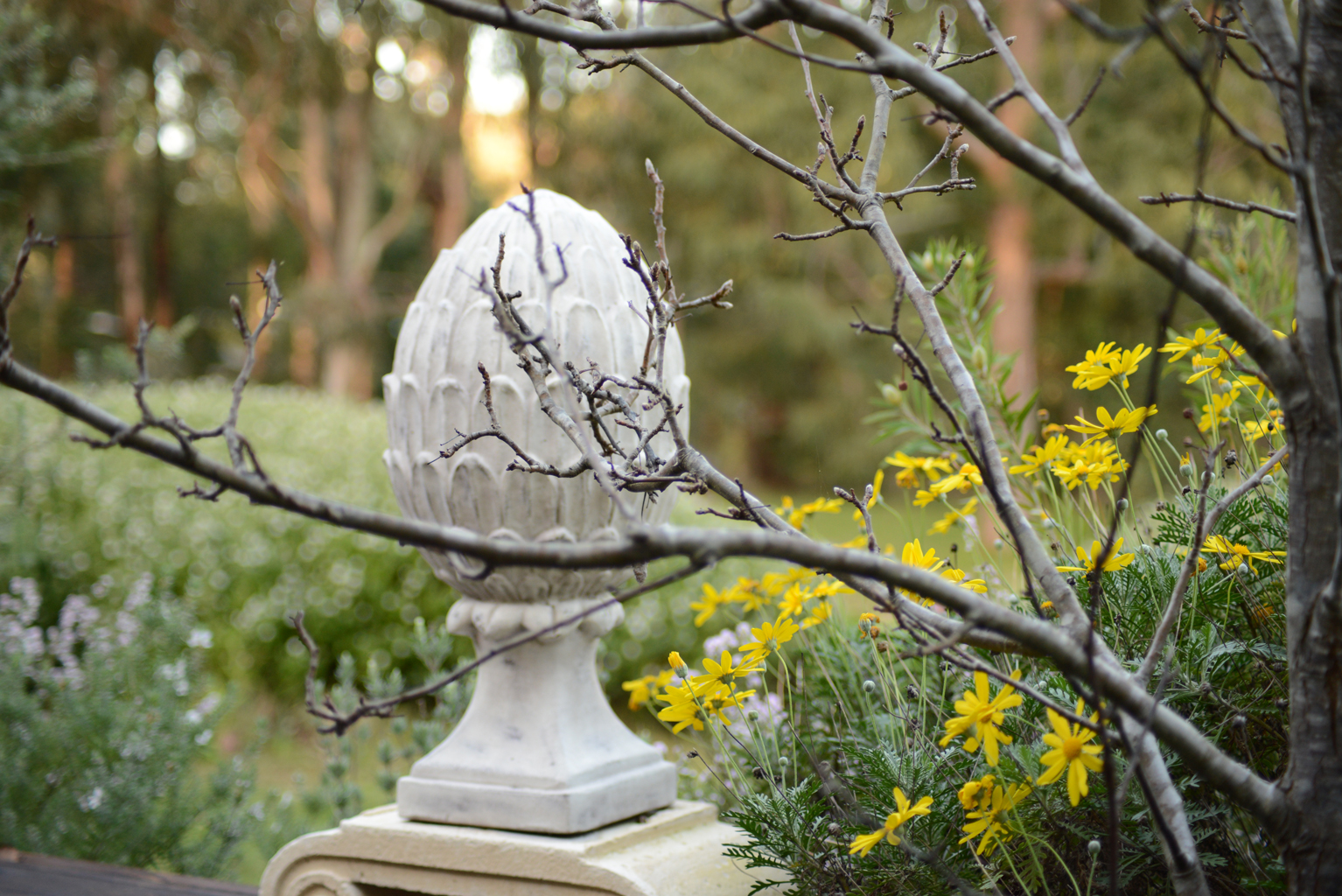 Margaret River Landscape Design