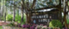 travel-resorts-sycamore-lodge.jpg
