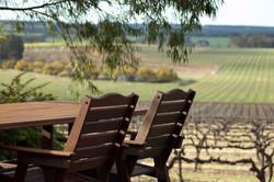 Ferngrove Winery Garden Landscaping