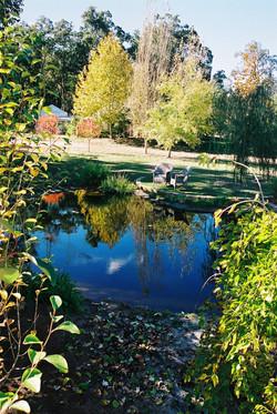 Country Garden Design & Landscaping