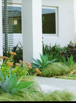 Coastal Garden Designs Perth