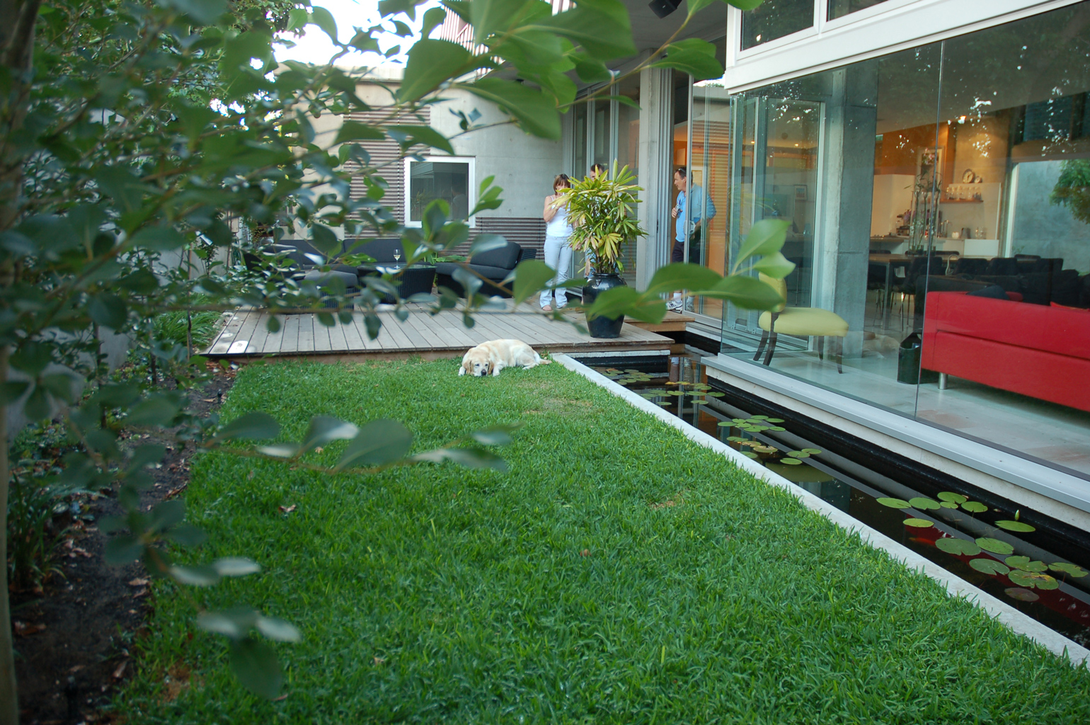 Cottesloe Courtyard Landscaping