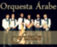 Orquesta Árabe Funún /Fernando Depiaggi
