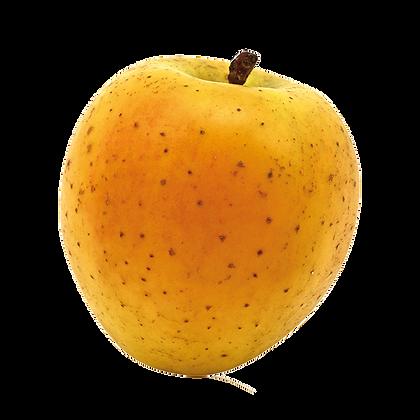 Pomme Goldrush Delis d'Or /Sud-Ouest x4 pièces