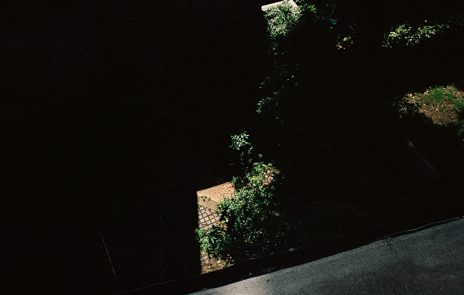A Shadow of a Home, 2014
