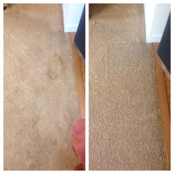 Residential carpet cleaning