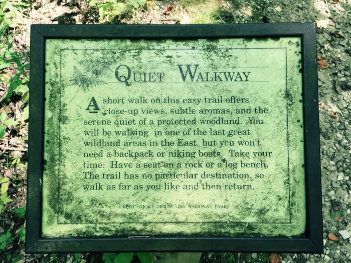 A Quiet Walkway
