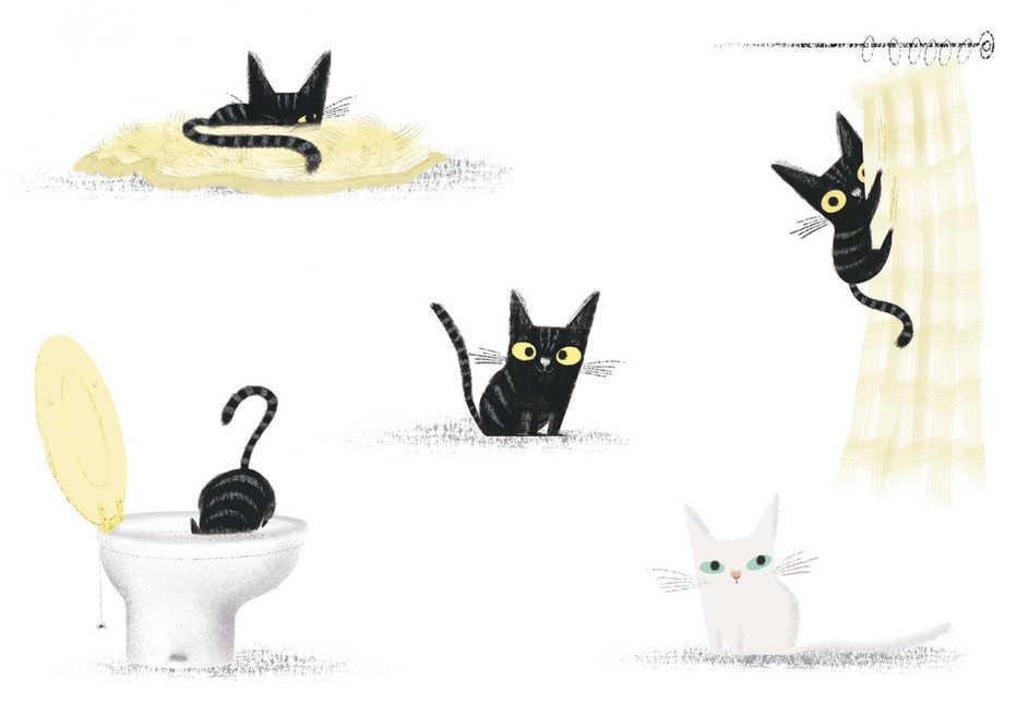 Kitten character studies