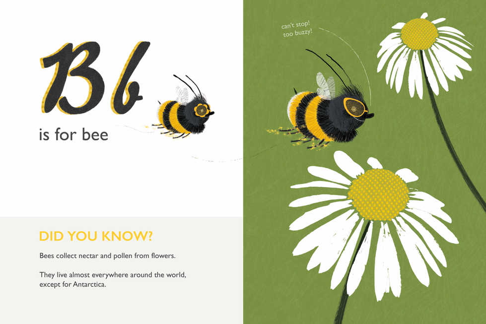 Amazing Insects ABC: Bee