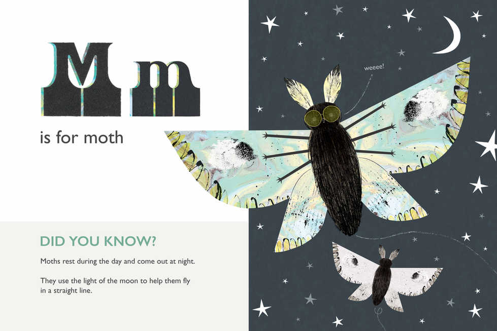 Amazing Insects ABC: Moth
