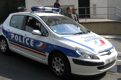 Voiture Police : 307