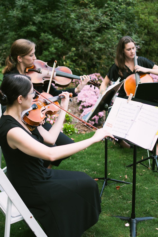 Wedding Music Violins