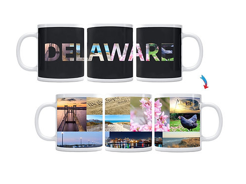 State of Delaware ThermoH Exray Mug
